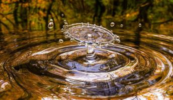Ma van a víz világnapja!